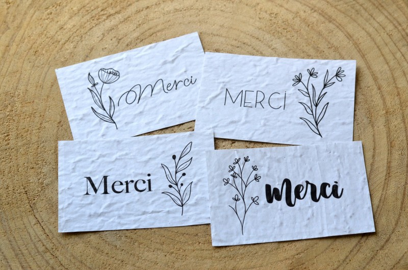 Lot de 4 Mini Cartes à planter Merci